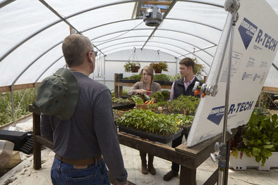 Steve Rustad gives direction inside greenhouse